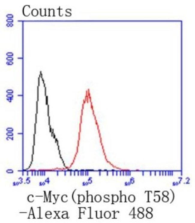 c-Myc Rabbit anti-Human, Clone: SN60-01, Novus Biologicals 100µL
